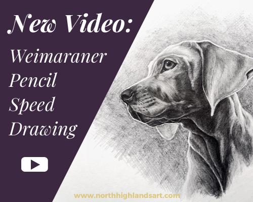 New video blog post: pencil dog drawing time lapse