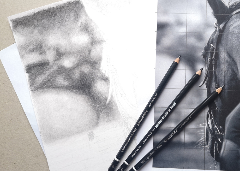 How to draw a blurred background in graphite pencil. Find out how in this blog post.