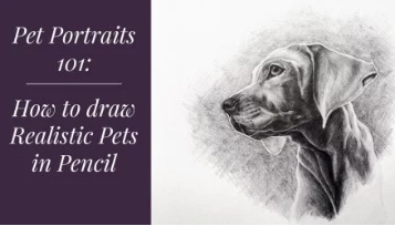 Enrol in class, Pet Portraits 101: Drawing Pets in Pencil